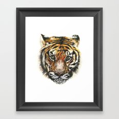 Tiger! Framed Art Print