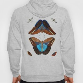 Vintage Moth Collection Hoody