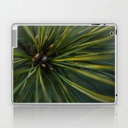 The Pine Laptop & iPad Skin