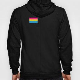 Pansexual Flag design LGBTQ Pride Gift Idea Hoody