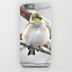 Winter Bird  iPhone 6s Slim Case
