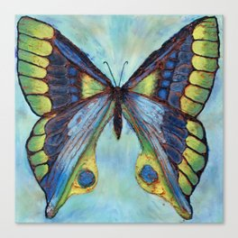 Patina Butterfly Canvas Print