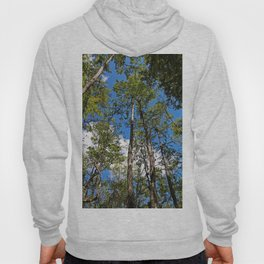The Trees Among Us Hoody