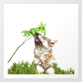 Wolf I (Animal Collection) Art Print
