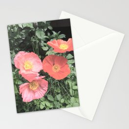 Papaveraceae Stationery Cards