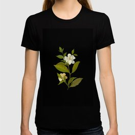 Gardenia Florida Mary Delany Delicate Paper Flower Collage Black Background Floral Botanical T-shirt