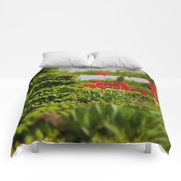 elm and red tulips arranged Comforters