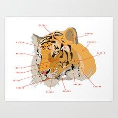 Tiger Colors Art Print