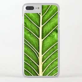wet moist foliage leaf minimal abstract close up macro spring tropical Clear iPhone Case