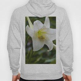 Floral Print 076 Hoody