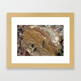 Life in Nature Framed Art Print