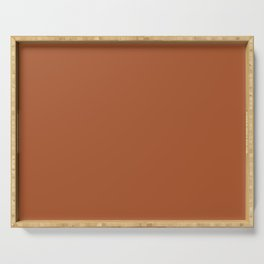 Clay Solid Deep Rich Rust Terracotta Colour Serving Tray