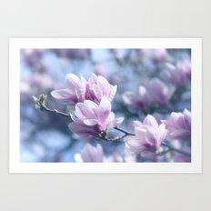 Magnolia beauty, patterns of nature Art Print