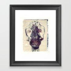 X Ray Terrestrial No. 1 Framed Art Print