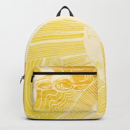 Solar Flare Backpack
