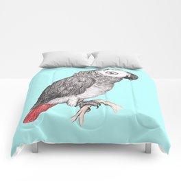 Cute African grey parrot Comforters