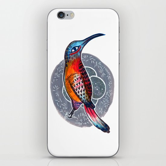 Hummingbird and Nest iPhone & iPod Skin