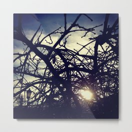contradictions Metal Print