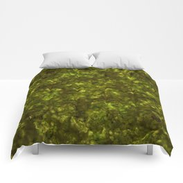 Forest Canopy Earth Comforters