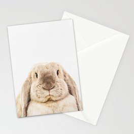 Bunny Rabbit Stationery Cards
