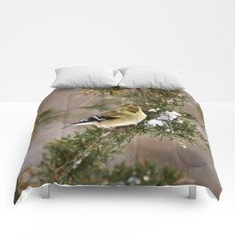 Professor Goldfinch Comforters