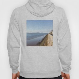 The River Tay Dundee 1 Hoody