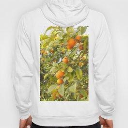 Fruits of Greece Hoody