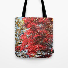 Fall maple trees of red leaves, in blue sky.  nature landscape photography. Tote Bag