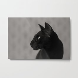 Oriental black cat Metal Print