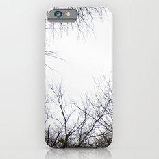 Tree Limbs iPhone 6s Slim Case