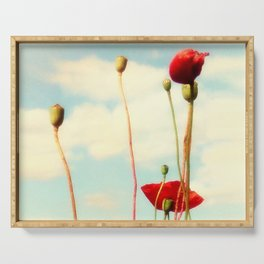 Lost Poppies Serving Tray