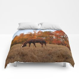 Horse Fall Days of Grazing Comforters