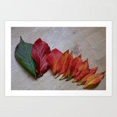 Color Transition Art Print