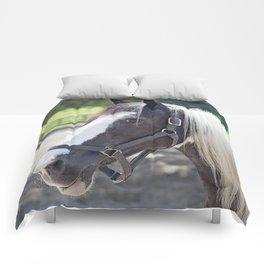 Gypsy Vanner Profile Comforters