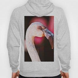 Fabulous Flamingo Hoody