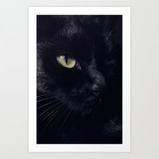 Black cat Art Print
