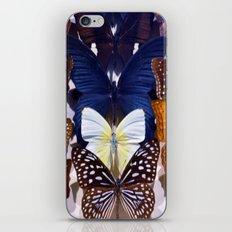 Farfalle II iPhone & iPod Skin