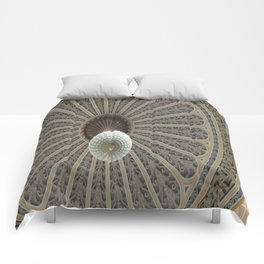 Dome Ceiling Comforters