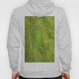 Greensward Hoody