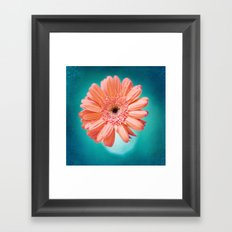 orange gerbera daisy Framed Art Print