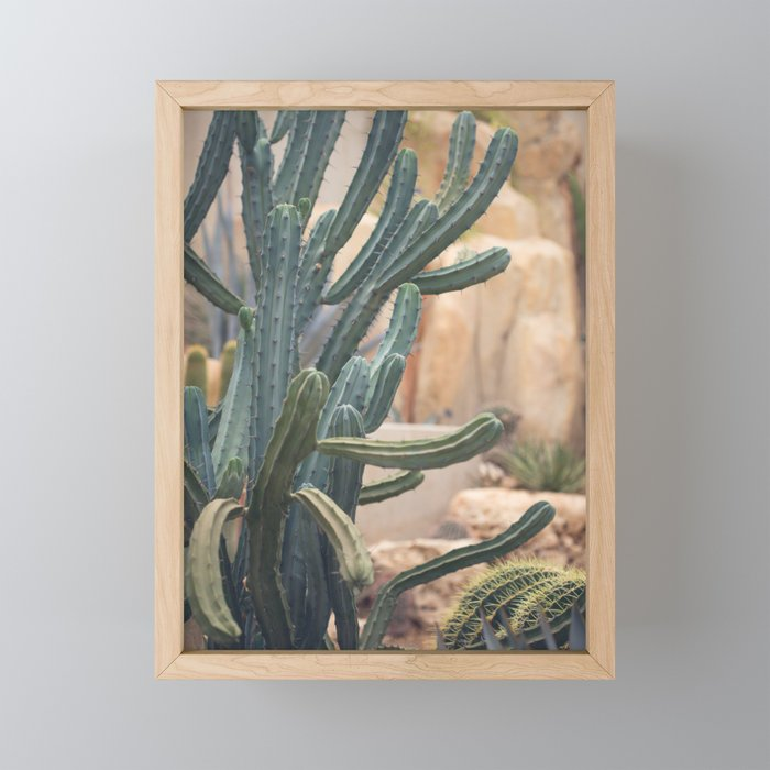 Cactus Jungle II Framed Mini Art Print