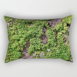 Transcend, Glacier National Park Rectangular Pillow