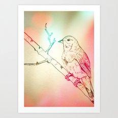 Nightingale Art Print