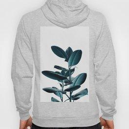 Ficus Hoody