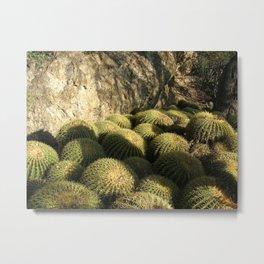 Shaded Cacti Metal Print