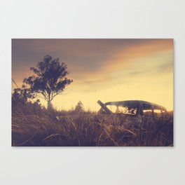 Sunsets and Forgotten Cars Canvas Print