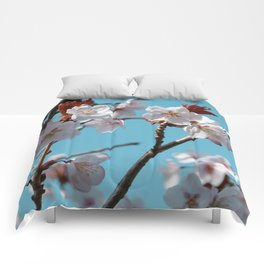 Blossom Floral Comforters