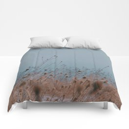 Color blur  Comforters