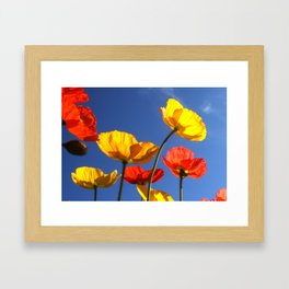 Happy Poppies Framed Art Print