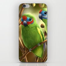 Double-eyed Fig Parrot iPhone & iPod Skin